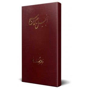 Farsi New Testament Bible